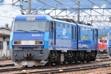 2008100601