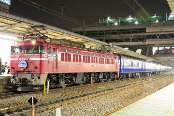 2009021303