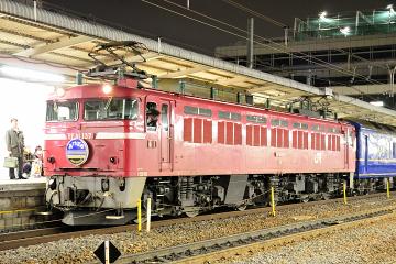 2009021304