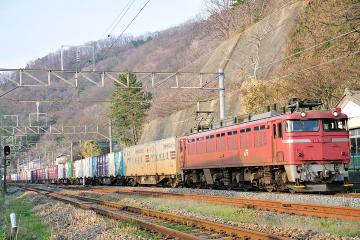 2009041205