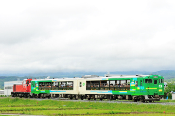 2009053005