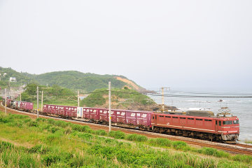 2009061305