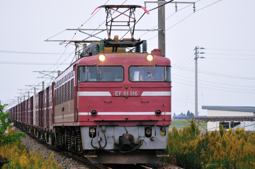 2009110104