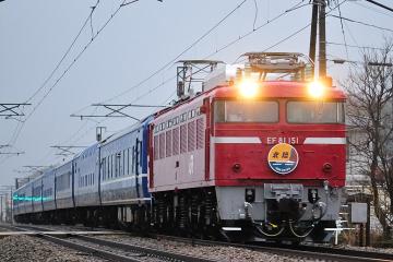 2010031305