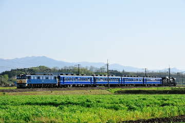 2010042901