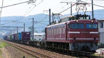 2010072806