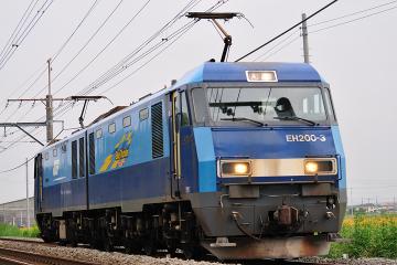 2010100502