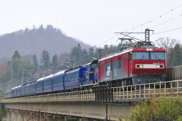 2008113028